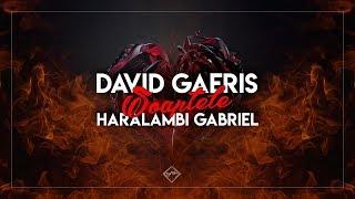 David GAERIS- Soaptele (feat. Haralambi)Video Lyrics