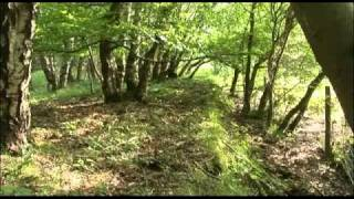 Lost Railways of the Forest of Dean - Severn & Wye.