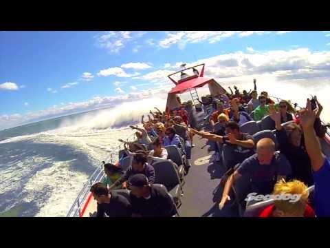 Seadog Chicago Extreme Thrill Ride at Navy Pier