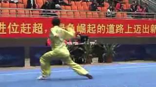 2010年全国武术套路锦标赛(传统)M09 003 男子八卦掌 孔繁辉