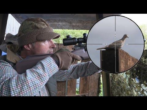 The Airgun Show – Shooting crows & doves on farm, PLUS Air Force One Air Ram Compressor Mp3