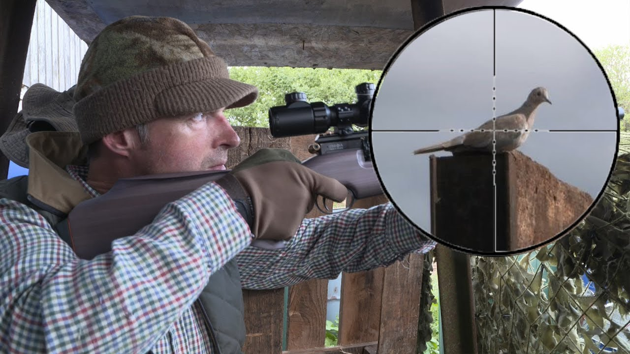 The Airgun Show – Shooting crows & doves on farm, PLUS Air Force One Air  Ram Compressor