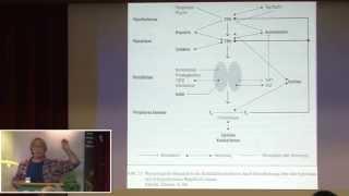 1/4: Roland Andre: Thyroxin und Kaliumjodid - Kassenschlager unter der Lupe