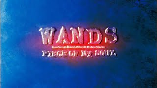 WANDS PIECE OF MY SOUL 弾いてみた WANDS GUITAR COVER CHANNEL