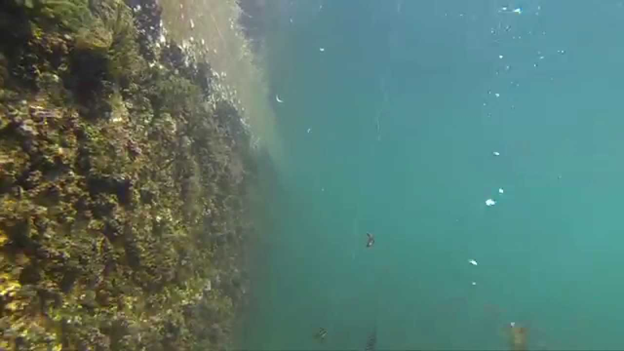 Gopro fishing youtube for Best gopro for fishing