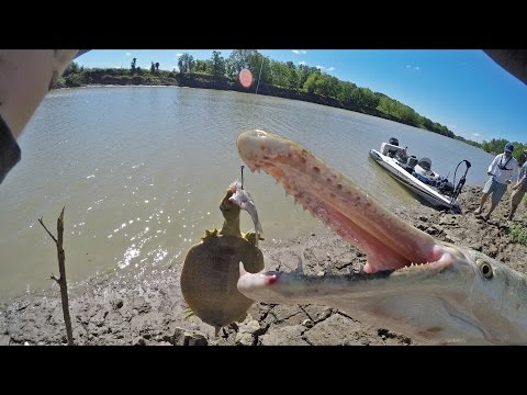 Mud Bank River Fishing - PB Gar and Soft Shell Turtle?...