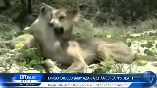 Dingo caused baby Azaria Chamberlain's death