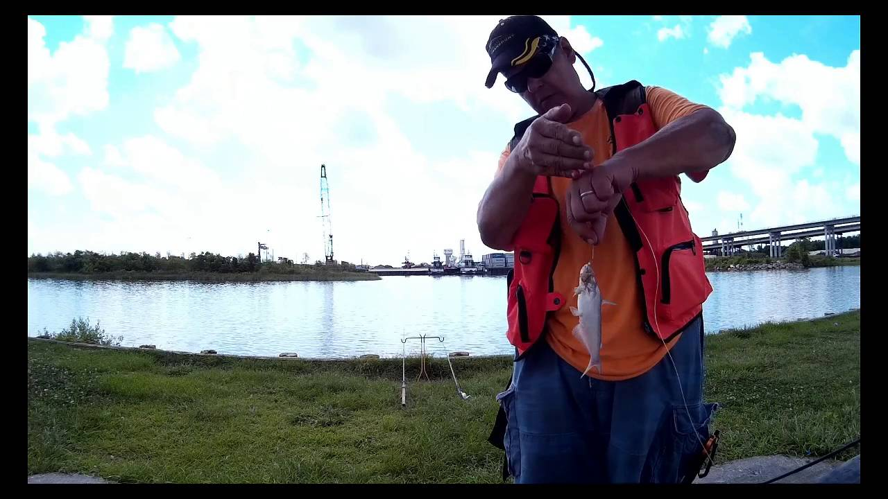 Full fishing report 7 1 2016 cedar bayou roseland park for Texas parks and wildlife fishing report