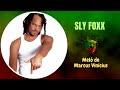 Sly fox - Broken Hearted (Tradução) Mêlo de Marcus vinicius