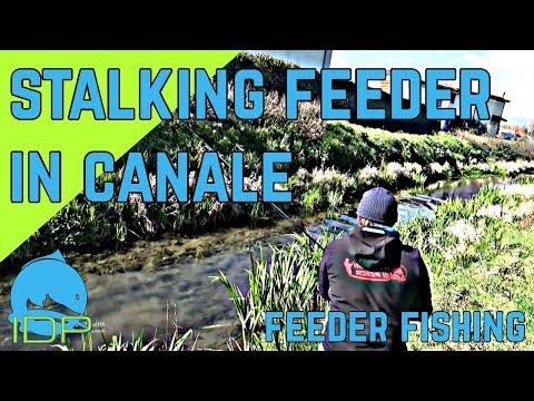 STALKING FEEDER IN CANALE! - I.D.P. #174 - FOSSI DI LUCCA 1-3