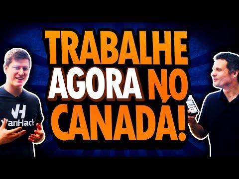 EMPRESA CANADENSE CONTRATA PROGRAMADORES BRASILEIROS PARA IR AO CANADÁ EM 2018!