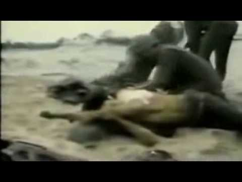 Raw Uncut Vietnam Footage from YouTube · Duration:  4 minutes 42 seconds