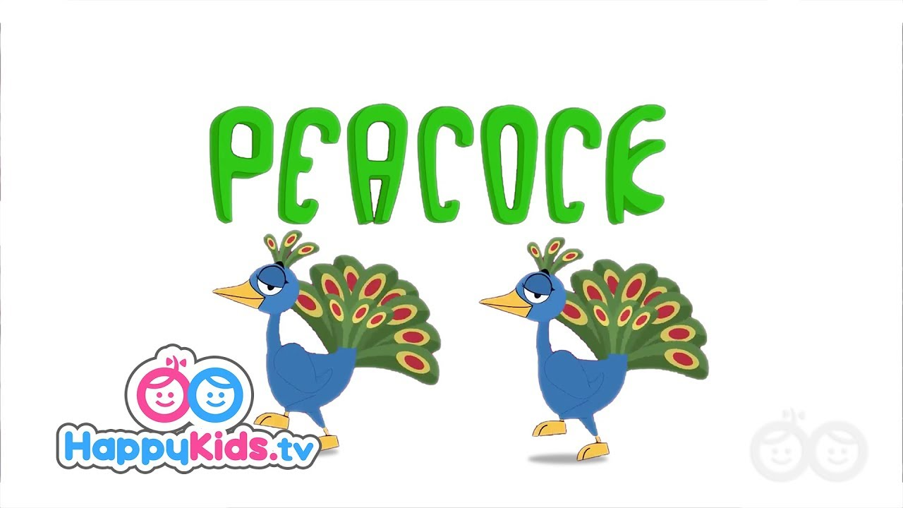Peacock - Learning Songs Collection For Kids And Children   Happy ...