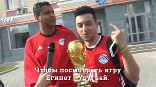Что футбольные болельщики из Египта думают о России
