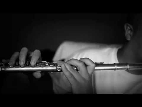 May The Force Be With You - John Williams (Flute Rendition)