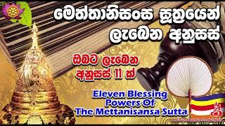 මෙත්තානිසංස සූත්රයෙන් ලැබෙන අනුසස් Eleven Blessing Powers Of The Mettanisansa Sutta