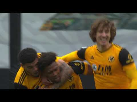 Wolves Brighton Goals And Highlights