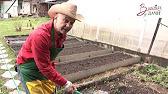 Как почистить выгребную яму самостоятельно - YouTube