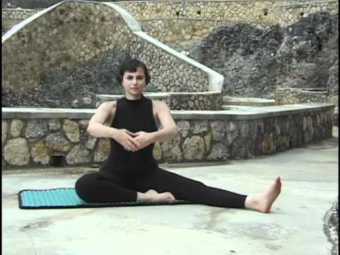 fabulous forever easy stretch  yoga tai chi dance