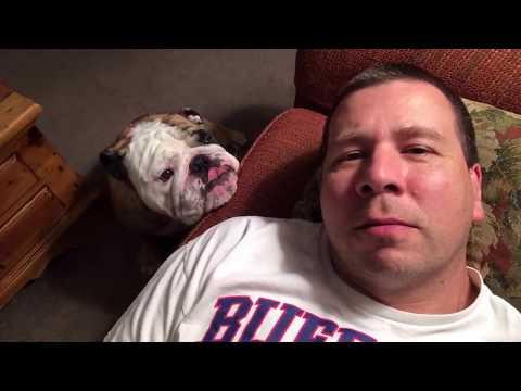 Sleepy Bulldog Wins Battle With Owner