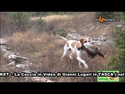 Caccia ai fagiani d'inverno, Lugari Video