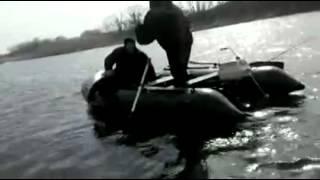 сом  101 кг пойманый на  реке Ворскла...Полтавская обл,  с Вильховатка