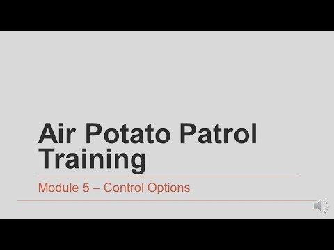 Air Potato Patrol Module 5- Control Options