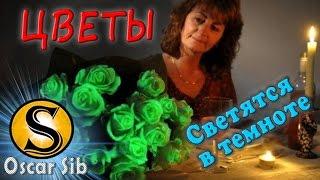 Купить готовый Бизнес. Цветы светящиеся в темноте. Идея цветочного бизнеса. Oscar Sib - Бизнес Идеи.(, 2011-03-09T09:29:54.000Z)