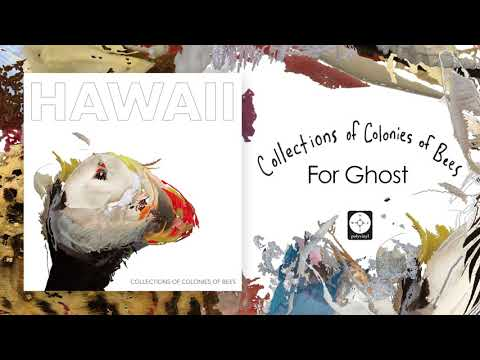 Collections of Colonies of Bees  For Ghost  AUDIO