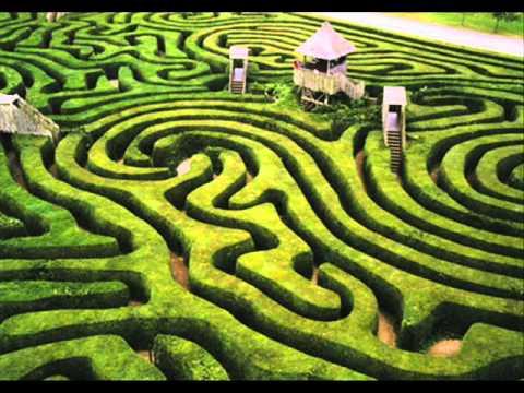 Des'ree - Crazy Maze