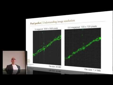 SciGraph2012 | Introduction & Imaging fundamentals