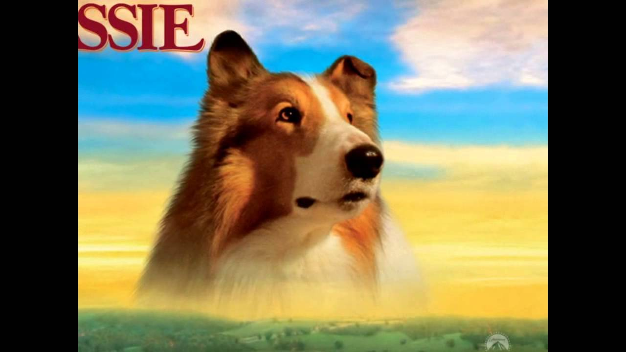 TOP 6 Películas Tristes De Perros!. :'( ♥Lari♥