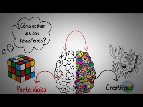 Como mejorar la memoria -Puedes tener una memoria increíble-Dominic O Brien-Resumen animado