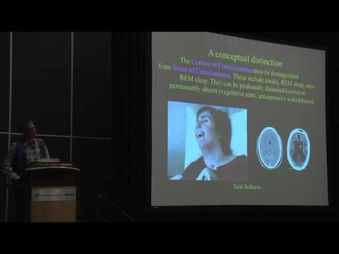 Tutorial: Integrated Information Theory of Consciousness