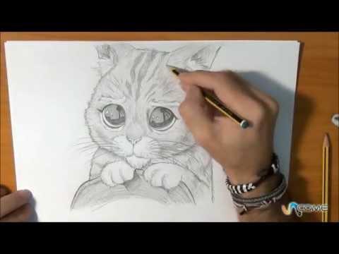 Imparate a disegnare il gatto con gli stivali di shrek for Disegno cavallo per bambini