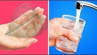20 فكرة سهلة لأشغال يدوية لفصل الخريف سيحبها أطفالك