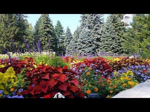JARDIN BOTANIQUE MONTREAL CANADA من أجمل حدائق كندا
