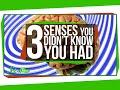 人間が感じ取れるのは五感だけではない–新たに追加されるかもしれない3つの感覚