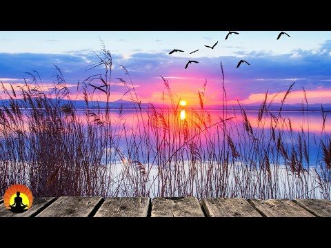 🔴 Relaxing Music 24/7, Meditation, Sleep Music, Healing, Calm Music, Spa, Zen, Study, Sleep, Relax music
