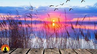 🔴 Relaxing Music 24/7, Meditation, Sleep Music, Healing, Calm Music, Spa, Zen, Study, Sleep, Relax