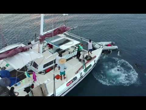Marinduque, Conception, Romblon Philippines Scuba Yacht Charter Trip - 필리핀 마린두께 콘셉션 롬블론 스쿠버 요트 리브어보드