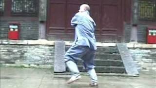 Shaolin Luo Han Pu Shen Shi Ba Shou - Arhat Protect Body 18 Hands aka Da Tongbi Quan