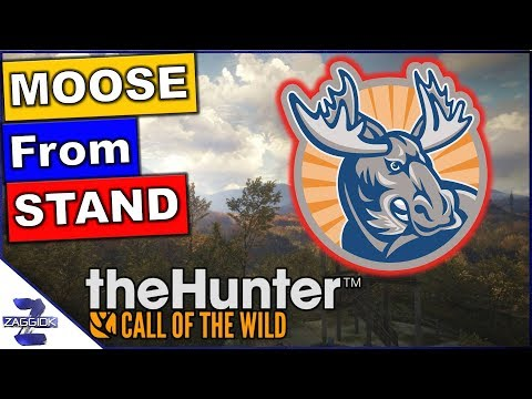 How to do Beatty - Waiting it Out TheHunter Call of the Wild Mission