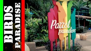 JURONG BIRD PARK - A great & fun visit ( 2018 )