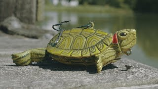 Fishing with a Handmade Turtle Lure!