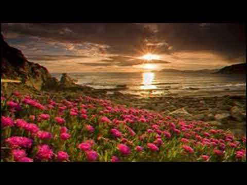Psalm 40:8-10  Ayrshire  Scottish Metrical Psalter 1650