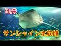 池袋 サンシャイン水族館 の動画、YouTube動画。