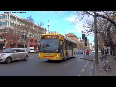 Buses In Adelaide, Australia 2017