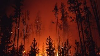 The Story Behind the Yellowstone Fires of 1988 | Retro Report | The New York Times
