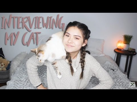 Interviewing my cat. (why am i like this?)